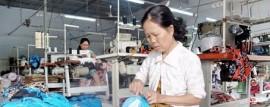 Luật Việt Á - Kế toán khao báo thuế Đồng Nai